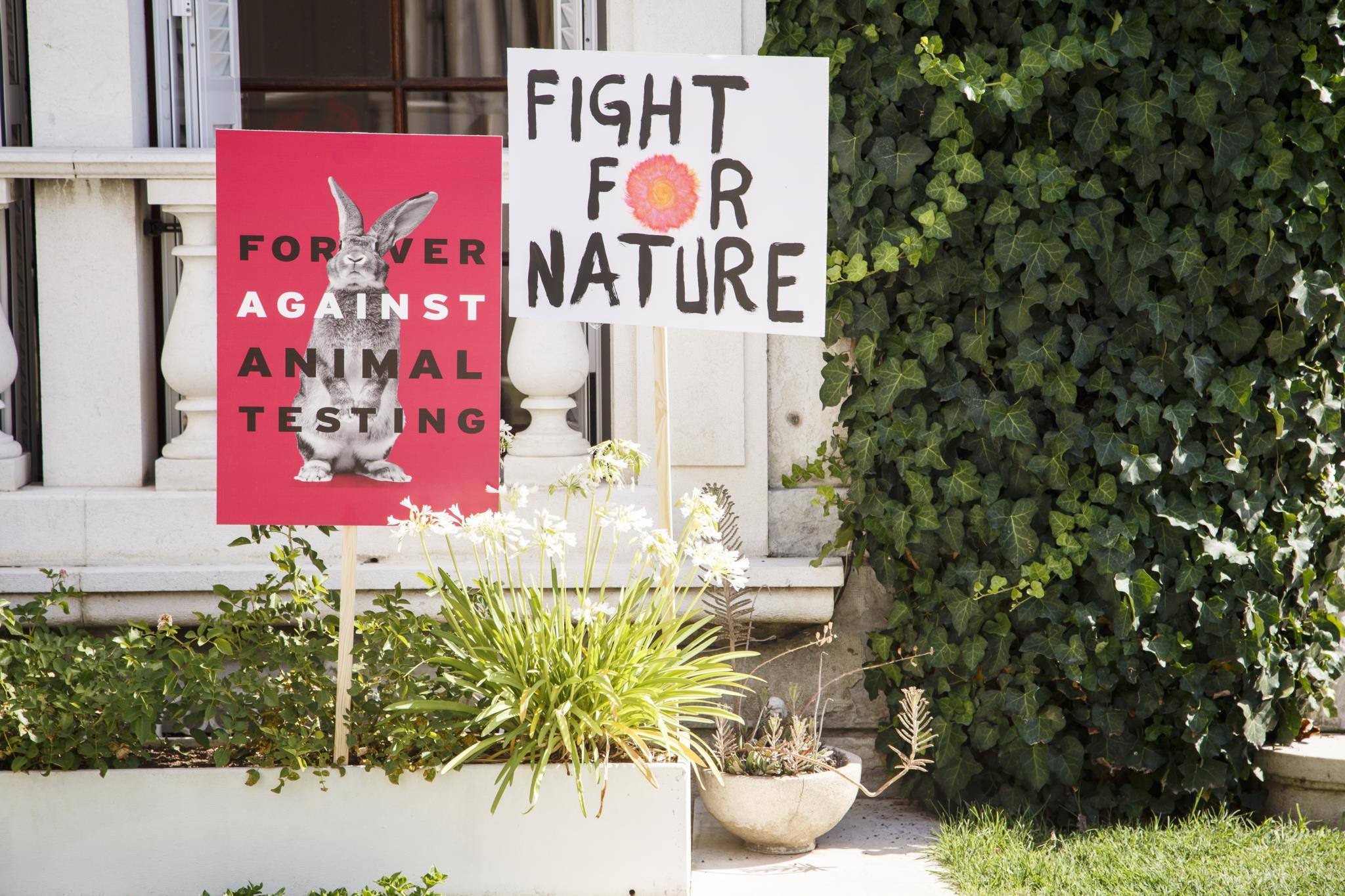 PÚBLICO - Acabar com testes em animais? São precisas oito milhões de assinaturas