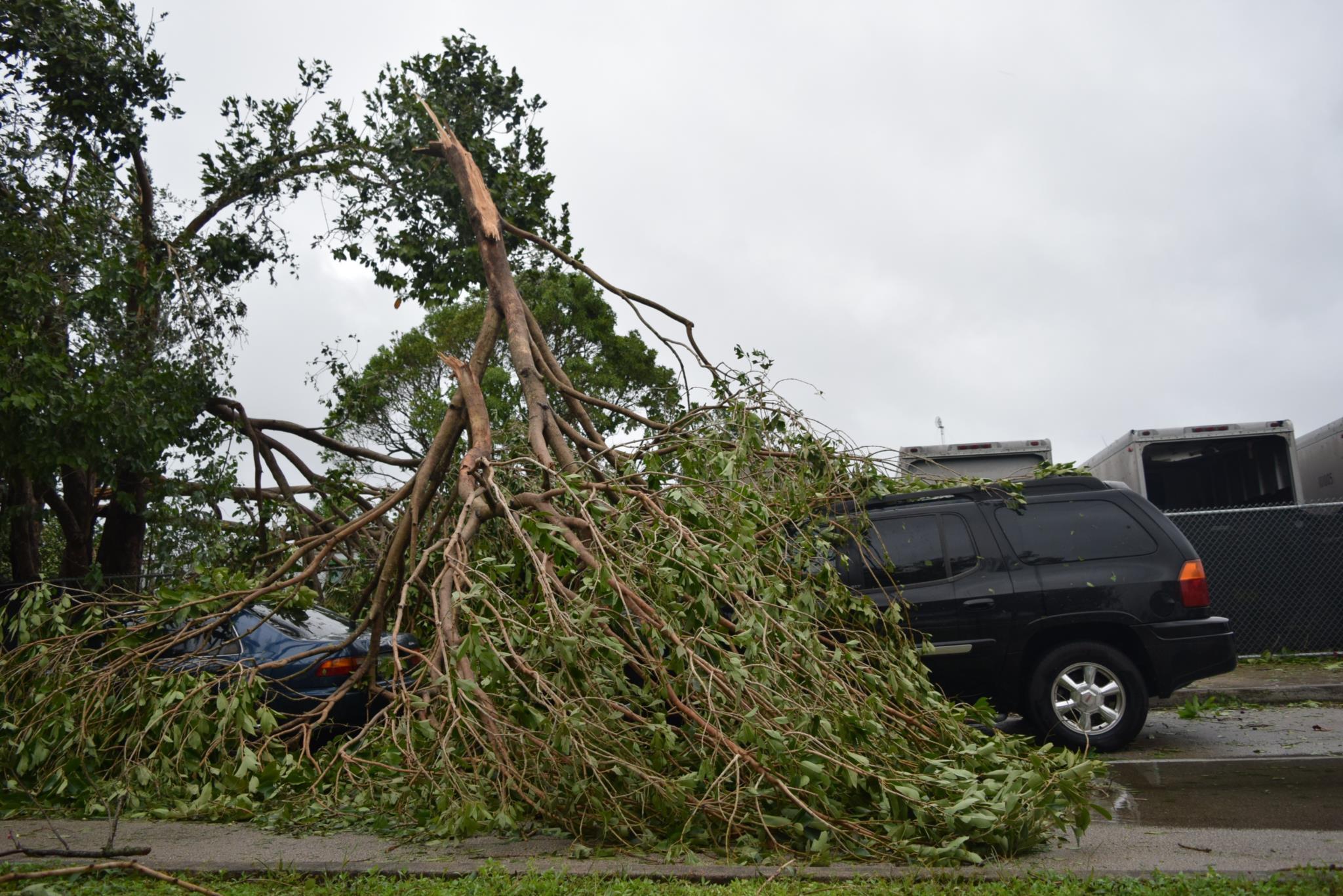 O furacão <i>Irma</i> deixou a sua marca no estado norte-americano da Florida