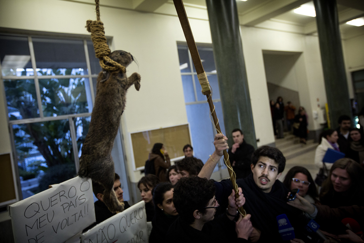 O animal usado no protesto dos estudantes