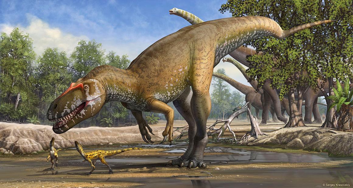Resultado de imagem para Antepassados dos mamíferos começaram a ter sangue quente há 300 milhões de anos