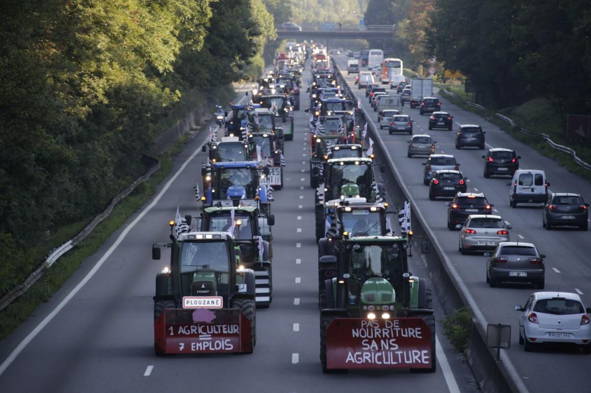 Embargo da Rússia e preço do leite arrastam agricultura europeia para a crise