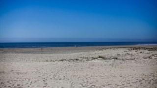 O festival decorre na praia de S. Jacinto, em Aveiro
